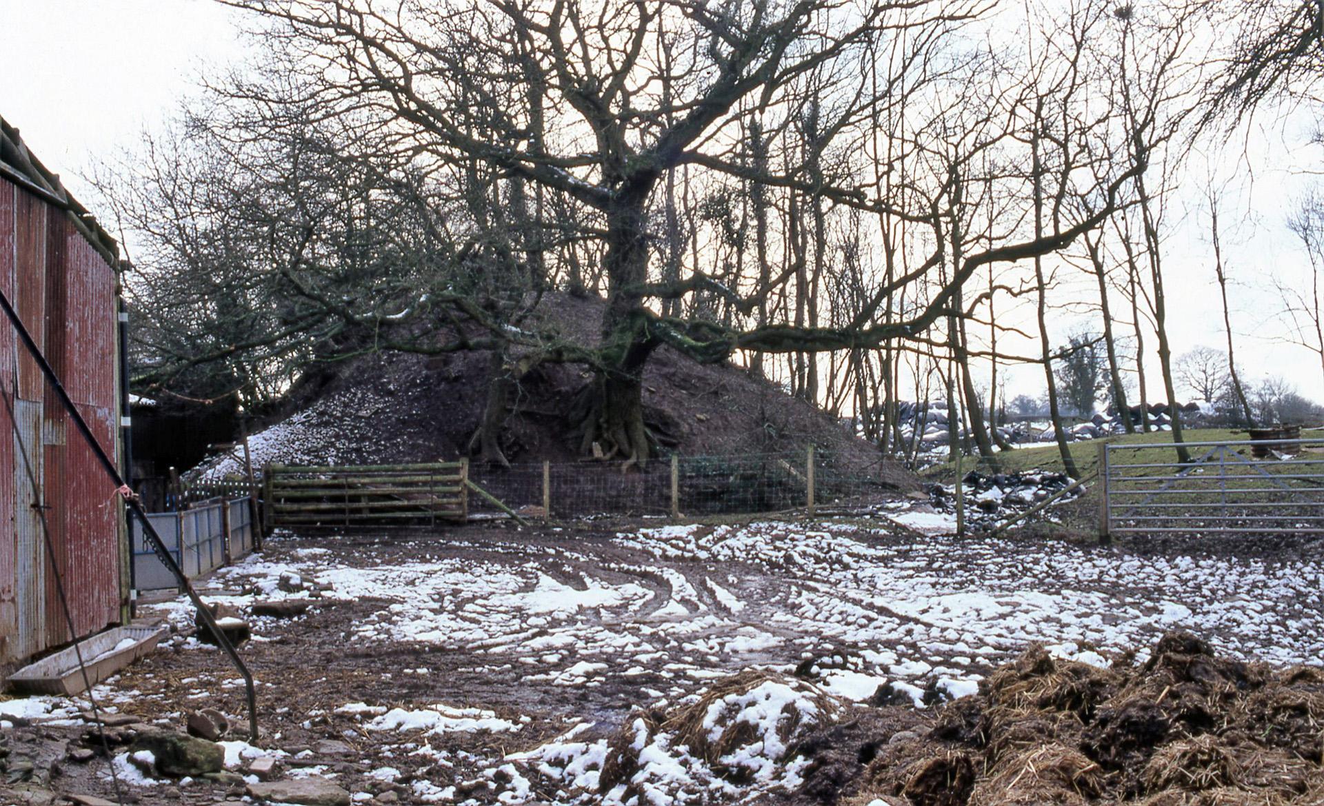 Newcastle Mound